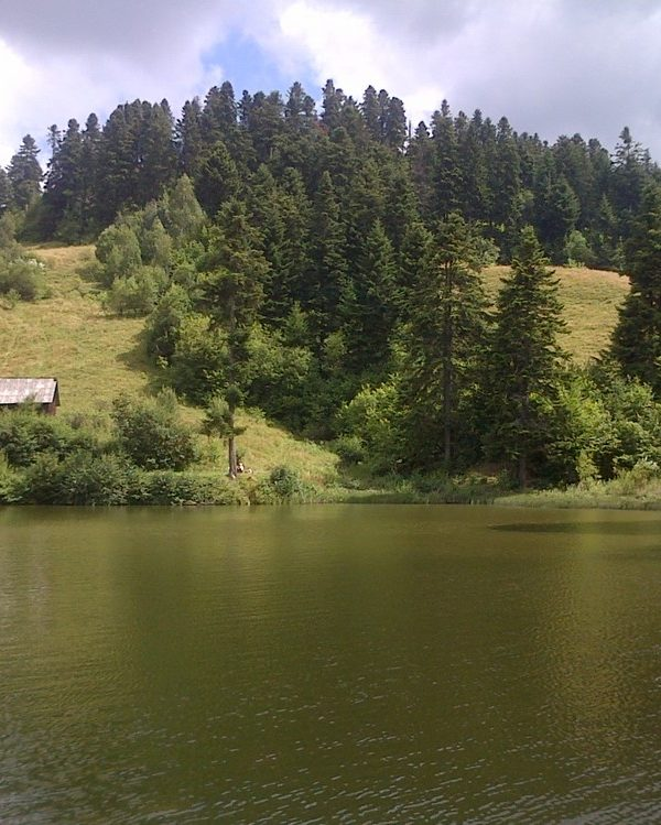 From Cluj 2 days tour the Apuseni Mountains (6)